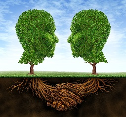 TPM hedge heads Fotolia 41938888 M bought 25.7.12